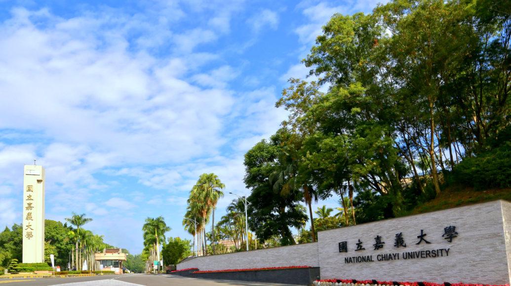 嘉義大學1